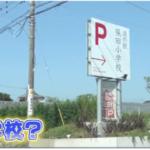 道の駅、保田小学校が進化。特徴が満載です。