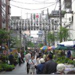 お富士さんの植木市2020の見どころ等「お祭り情報満載!!」。最新情報&動画や画像の「見える化情報」も見逃すな!!