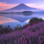 富士山河口湖山開きまつり花火大会2019、見どころの動画やアクセス、駐車場を紹介しています。